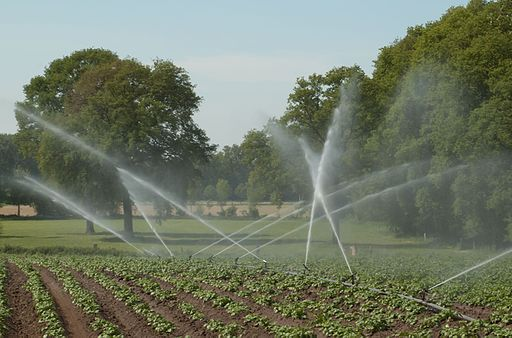 Irrigation_system_-Perrot-_in_action